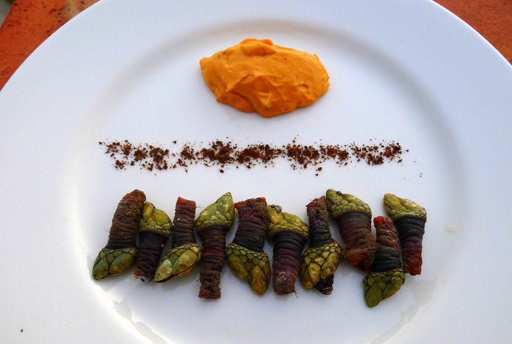 Percebes with chipotle aioli