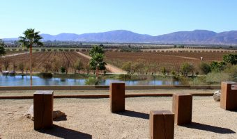 THRILLIST:  THE VALLE DE GUADALUPE IS MEXICO'S WINE COUNTRY THAT YOU NEED TO BE VISITING, LIKE, YESTERDAY